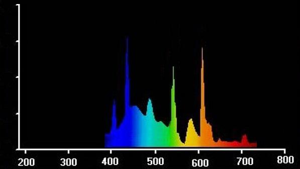 Strahlungsverteilung_ESL_Grow